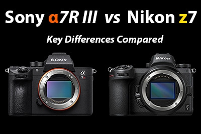 sony a7R iii vs nikon z7 comparison