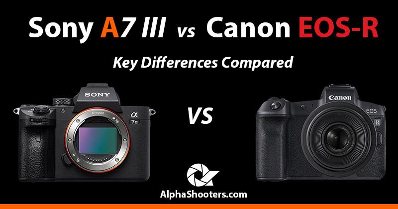 sony a7iii vs canon eos r