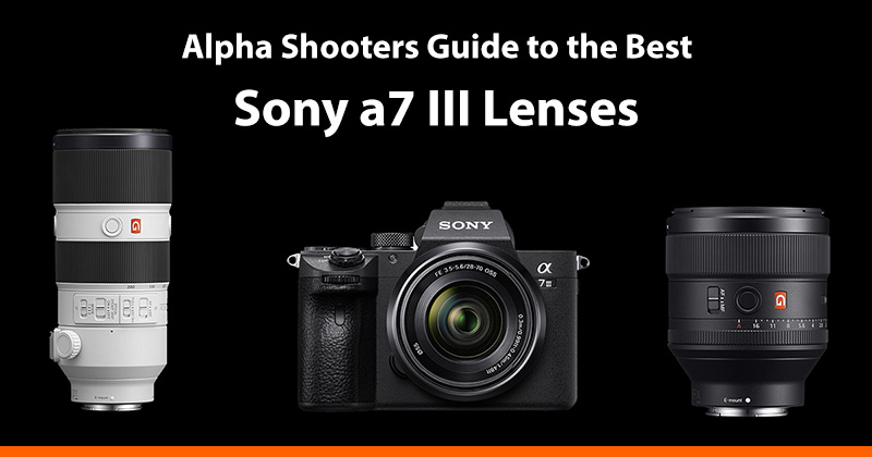 The Best Sony a7III Lenses Guide - AlphaShooters com
