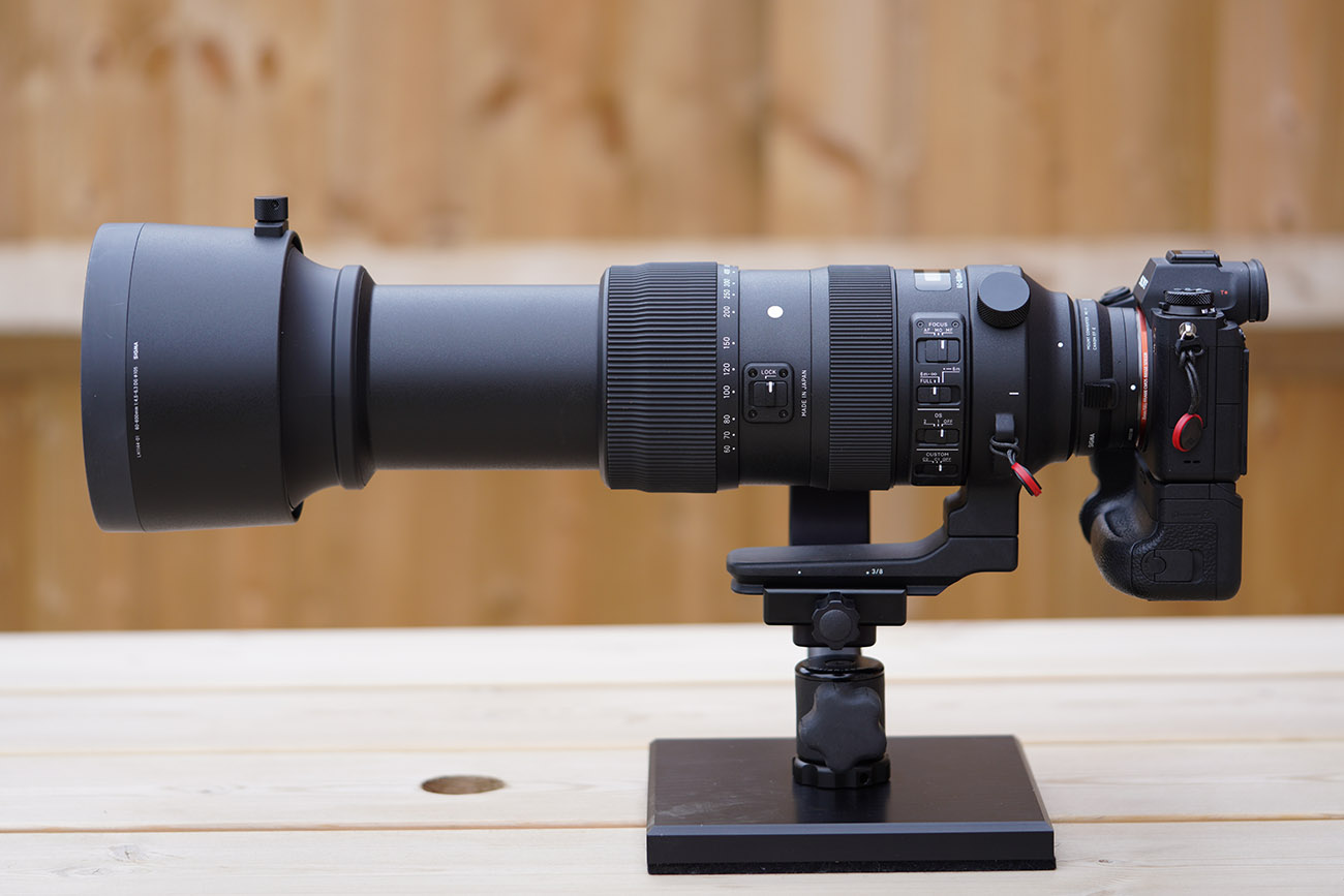 Sigma 60-600 on Sony A9 Review