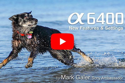mark galer a6400 review