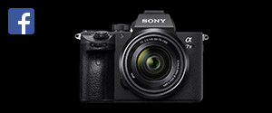 Sony a7iii Shooters Group Facebook