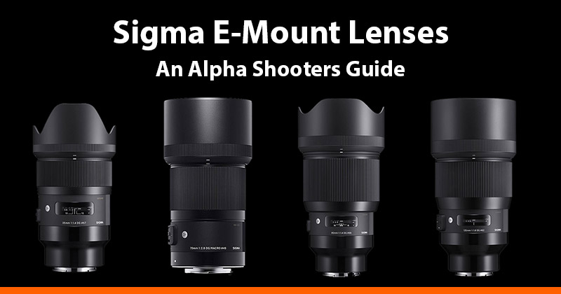 Sigma E-mount Lenses