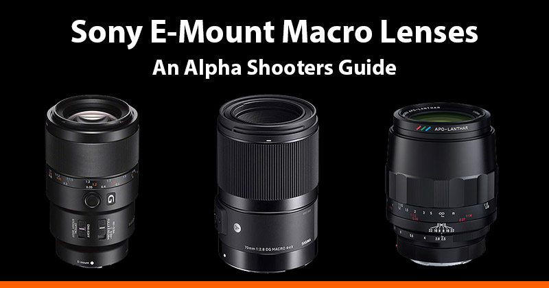 Sony E-mount Macro Lenses