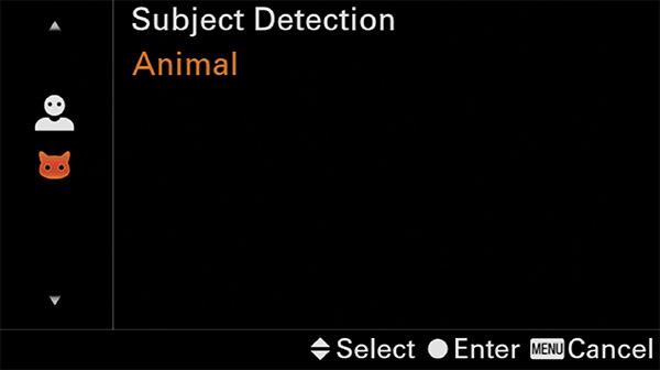 sony a6400 animal eye af setup human or animal