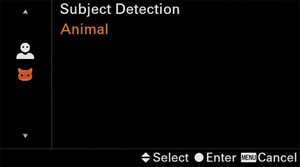 sony a6400 animal eye af custom button animal / human