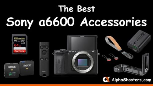 Sony a6600 Accessories