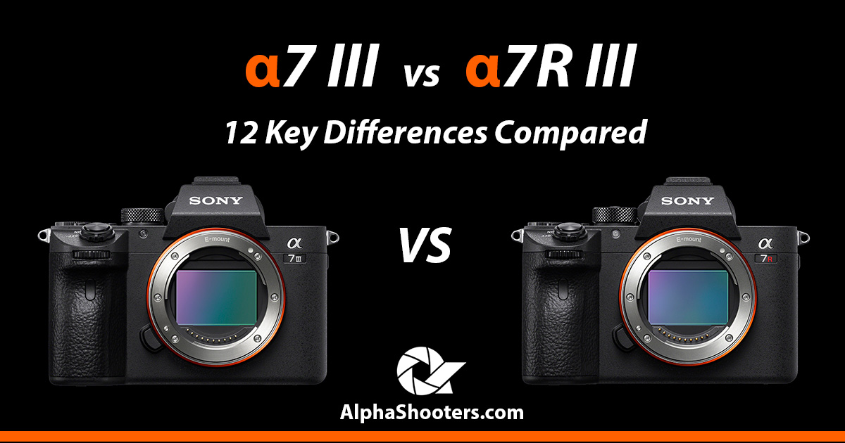 Sony a7 III vs a7R III - 12 Key Differences Compared - Alpha