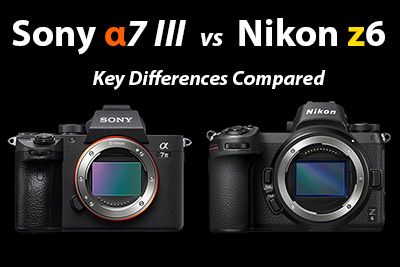sony a7iii vs nikon z6 comparison