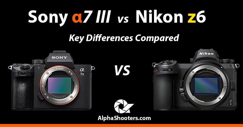 sony a7iii vs nikon z6 comparison