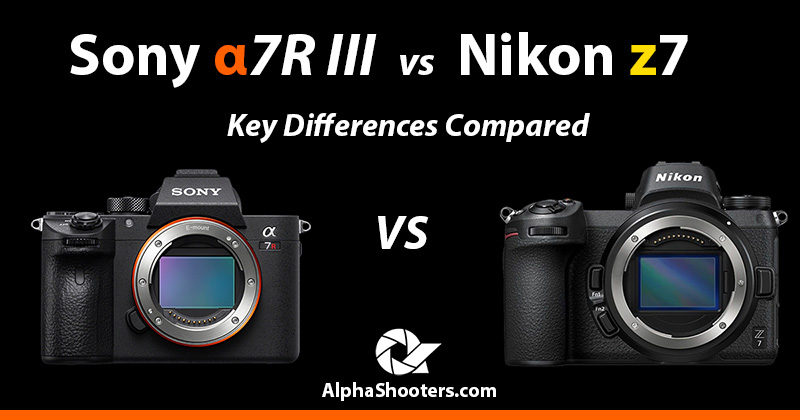 sony a7R iii vs nikon z7 comparison
